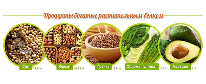 растительные-белки